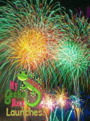 Fireworks MyGeckoBox Luanches on the Costa Del Sol